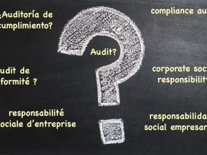 What is a social responsibility audit?