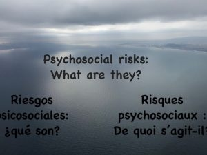 Psychosocial risk factors in the auditing context